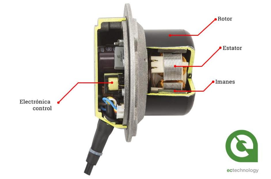Partes de un motor EC