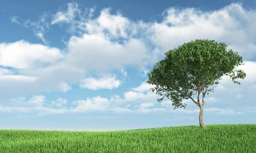 Sondas de calidad del aire: eficiencia energética y ahorro